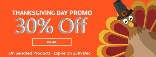 thanksgiving day promo